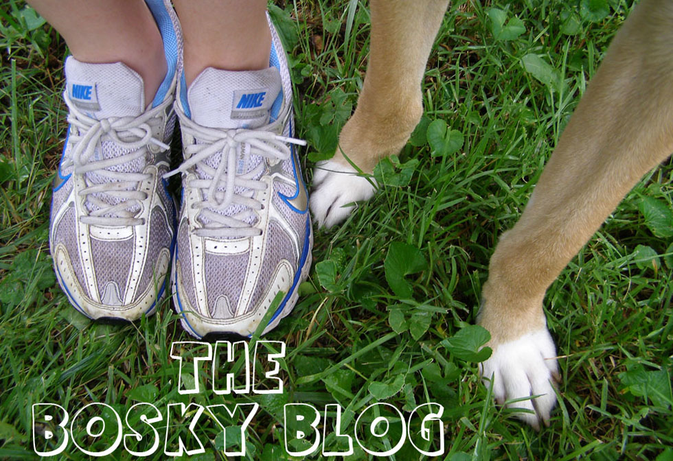The Bosky Blog: Keeping up with Goliath